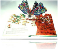 butterly on a book